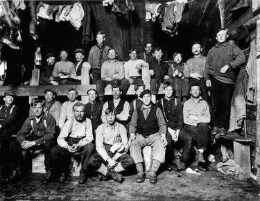 Logging camp crew posed for the photographer in a sleepcamp.