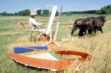 Self-raking reapers began to replace the old harvesting method in the mid-1860s.