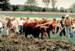 Students experience what life was like on a Minnesota farm 150 years ago.